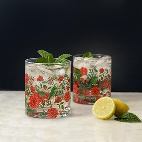 Floral Fiesta Set of 4 Glasses